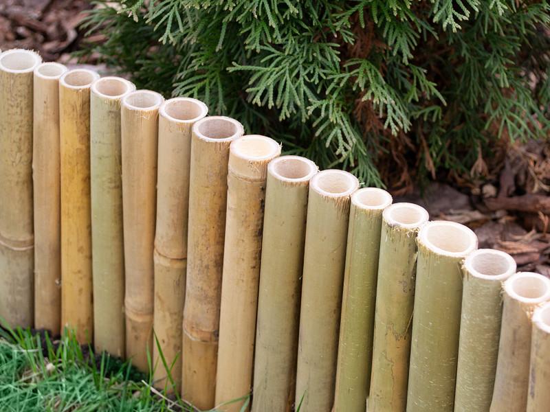bambus beetumrandung