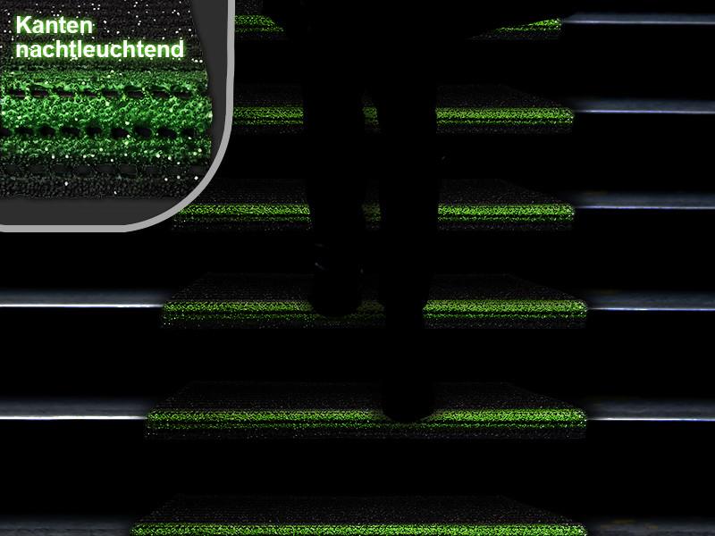 Anthrazit, 60 x 24 cm wetterfest /& widerstandsf/ähig Sicherheitsmatten in 2 Gr/ö/ßen 2 Farben Floordirekt Sicherheits-Stufenauflage mit Alu-Schiene Treppenmatten f/ür au/ßen