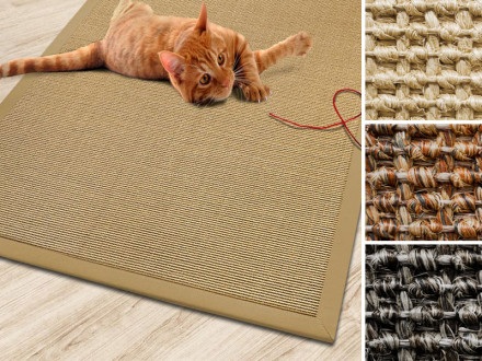 Sisal-Katzenteppich mit Bordüre   3 Farben